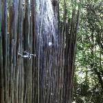 Msenge lodge outdoor shower