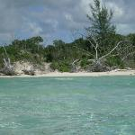 Gold Rock Beach  |   Lucayan National Park, Grand Bahama Island