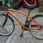 One of Sabal Palms' trusty Cruiser bikes, free for use of guests