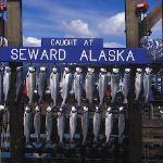 Finest fishing in Alaska