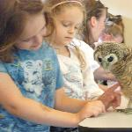 Kids with another baby owl :)