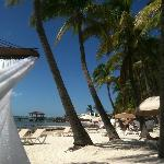 Gorgeous property - view of ocean, beach from our hammock!