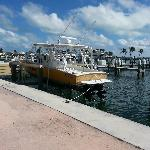 boat docked in marina