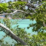Vista dal sentiero panoramico della baia delle tartarughe