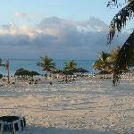 Large Beach Area