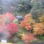 Izanro Iwasaki Foto