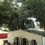 Old Bakadaji