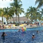 Pileta del Hotel Oasis Palm