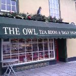 The Owl Tea Room in Holt