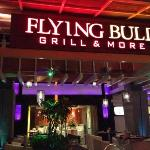 Flying Bull at night