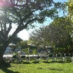 The Club Gardens