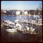 Actual view from 5th fl. room at Holiday Inn Solomons, MD