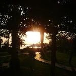 Beautiful gardens= perfect sunset