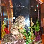 Aquarium in center of the restaurant