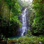 Butterfly falls - GORGEOUS