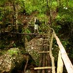 Hiking trail bridges