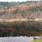 Ausflugsziel Sankenbach See