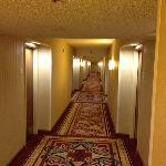 The Hallways!! Nice.
