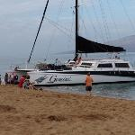 Excursion on catamaran, behind Westin