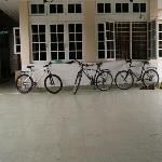 Bikes at Bike World, Guest and hotel-owned