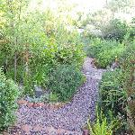 Path leading to pool and house from Arum Lily Cottage