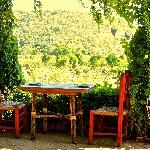 Photo of Los Tamarindos