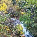 McHugh Creek next to trailhead picnic area 10/6/12