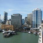 Auckland is an upscale, very urban city - the largest in New Zealand