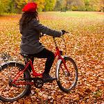 Autumn in Tiergarten