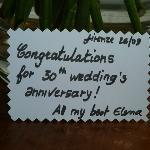 Thank You Elena