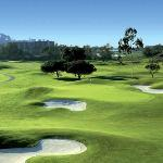 Around of Golf with Seamore-Express Tours and Guesthouse