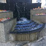 fountain - nice flowers - due to be ironed though