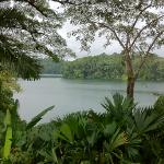 view on gatun lake