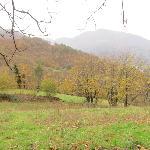 Campo de manzanos con vistas en la ladera tras el hotel