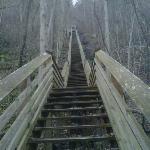 Kaymoor Miners Trail