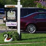 White Swan Bed and Breakfast