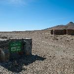 Shady camp site