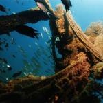 Sri Gadong Wreck