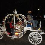 Riverwalk carriage ride