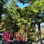 大洞院参道