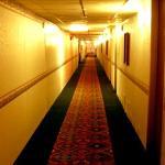 Photo of Executive Inn
