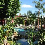 Pool / Gardens