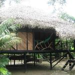 beautiful lodge in the jungle,nice adventure