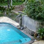 Serenity at the pool