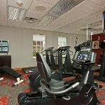 Onsite Newly Renovated Fitness Center