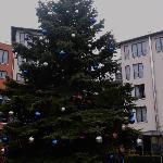 Fast fertig geschmückter W`nachtsbaum vom Hotel Esplanade