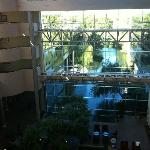 View of glass wall inside hotel looking out