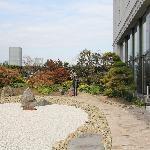 terrace rock garden