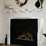 Audubon room gas fireplace