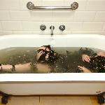 Soak Seaweed Baths